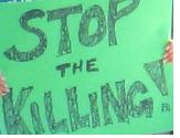 stopthekilling